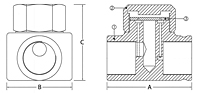 Thermostatic Steam Trap - CTD-600 Series - Dimensions