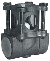Combination Sight Glass & Check Valve